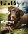 2020 Land Report Fall Issue